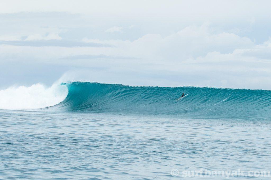 Clarets / Lolok Point / Bay of Plenty Lefts 4